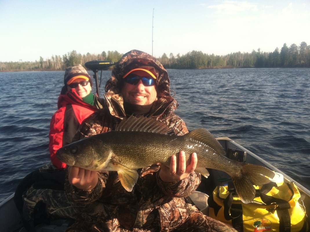 Lake Vermilion Walleye